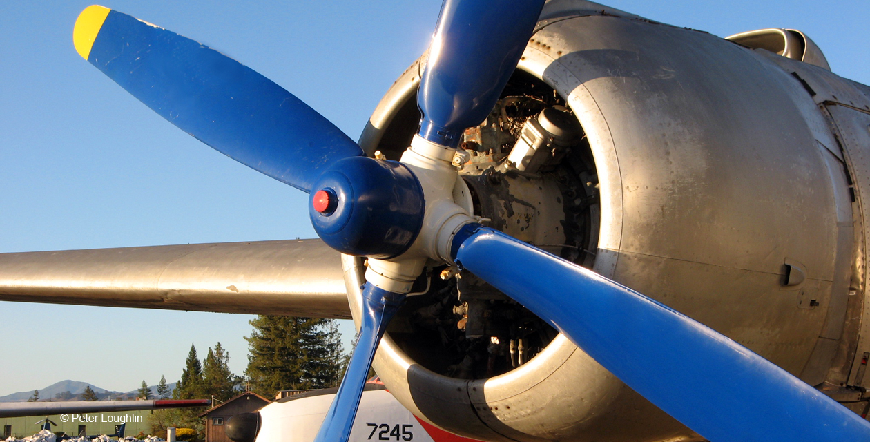 close-up photo of one of the two engines on the IL-14, with silver-painted cowling and blue-painted propeller blades.