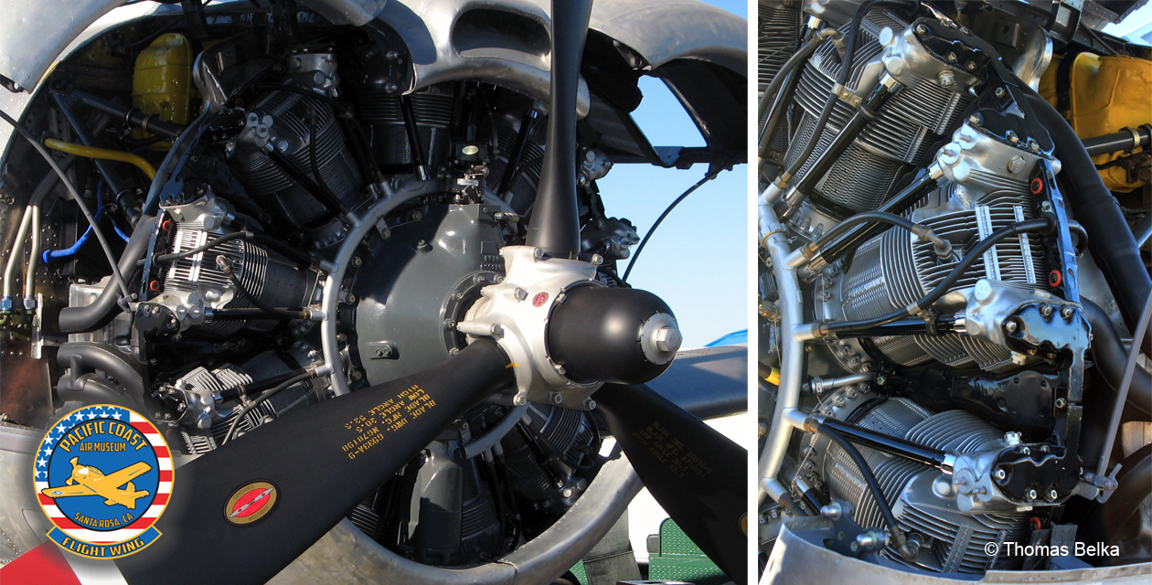 Close-up of the T-28 engine, showing its gleaming and spotless condition.