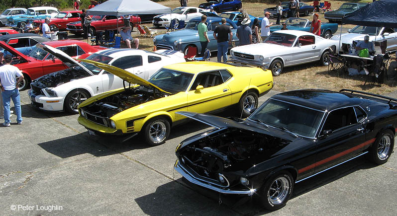 classic cars, mostly Ford Mustangs, on display at a car show